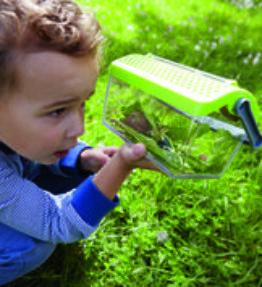 Terra Kids Insectendoos