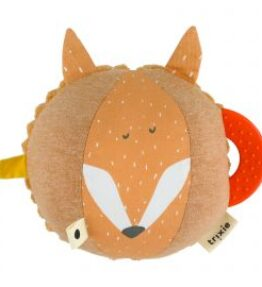 Mr. Fox - Activiteitenbal