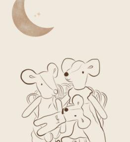 Félou Family Houses - Miniatuur illustratie Leaf the studio