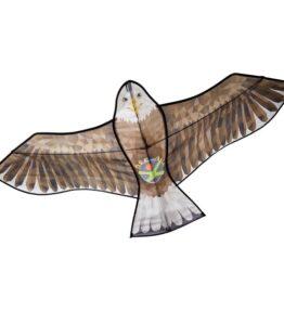 Terra Kids - Vlieger roofvogel