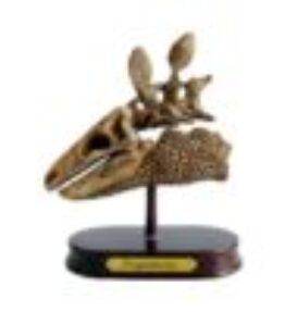 Dino uitgraafset - Stegoaurus schedel